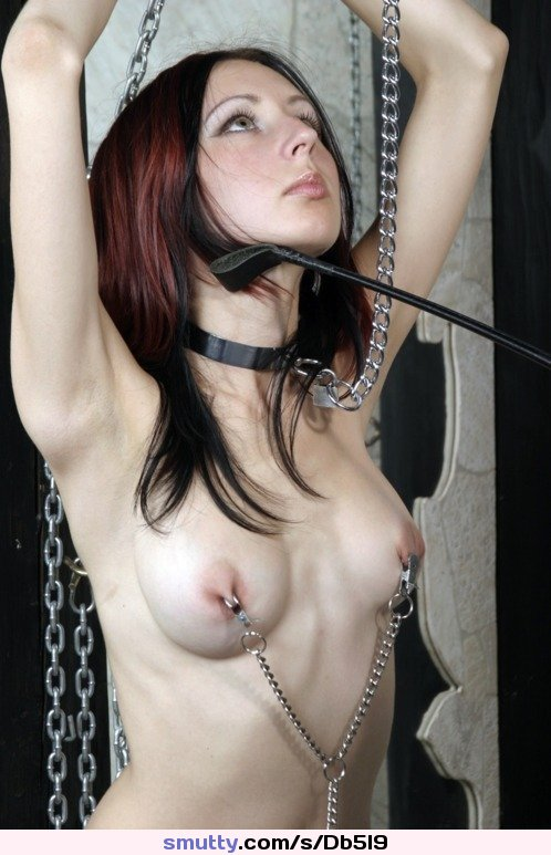 hentai resident evil studiofow porn video tube An image by: ludvig - Fantasti.cc#bondage #chains #whip #clamps #nippleclamps #bdsm