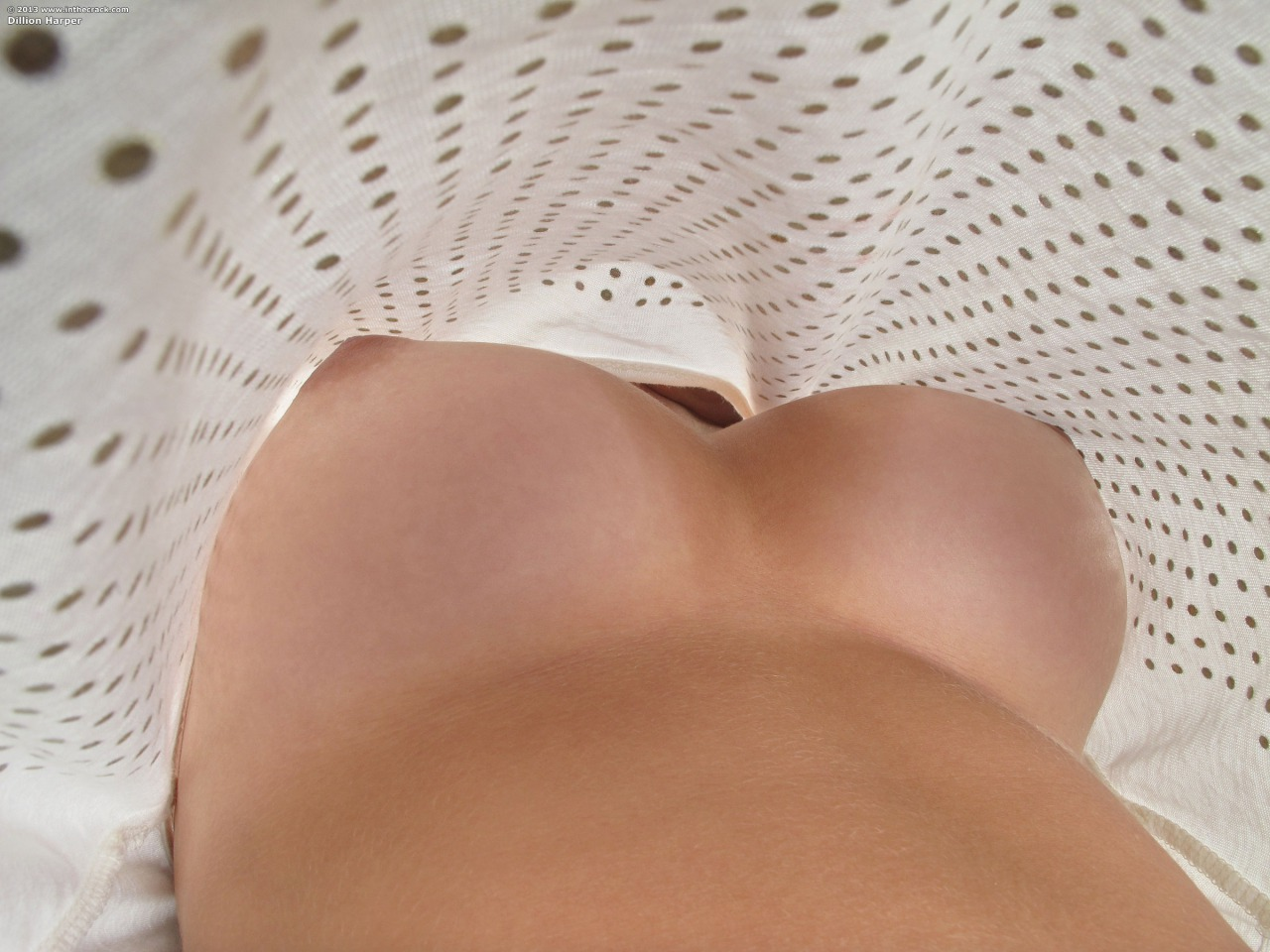 plumper sex tube videos free chubby black shemale porn Adorable, Amazing, Aureola, Awesome, Beautiful, Belly, Bigboobs, Bignaturals, Bignaturals, Bigtits, Bodacious, Boobs, Brafree, Breasts, Busty, Curves, Curvy, Cute, Dance, Erotic, Eroticart, Flatstomach, Foxy, Gorgeous, Greatrack, Greatshot, Hot, Hotbabe, Hotbody, Hottie, Hourglass, Justperfect, Lovely, Mycarr, Nicepair, Nicerack, Niceshot, Nipples, Nobra, Nobra, Nudeart, Opportunity, Perfect, Perfecttits, Photography, Photography, Picture, Pinknipples, Roundtits, Seduction, Seductive, Sensual, Sexy, Sexyfav, Sheer, Smclmnc, Stunning, Surprise, Sweet, Teen, Tits, Tits, Topless, Undershirt, Waist, Wow, Youg